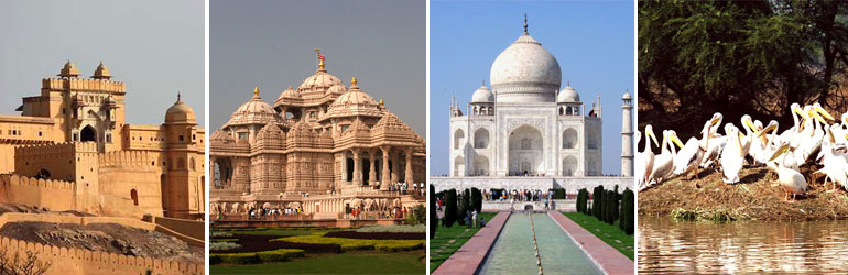 9 Days Golden Triangle Ganges Package With Tiger Tour