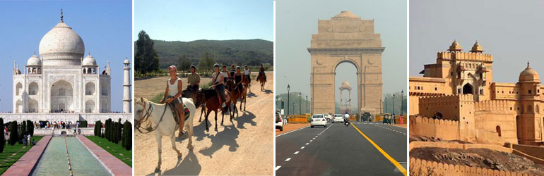 12 Days Golden Triangle Package With Horse Safari Tour